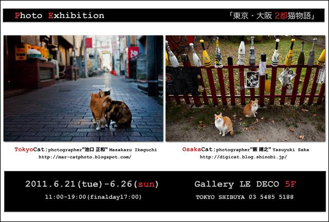 「東京・大阪2都猫物語」 _c0165046_23405864.jpg