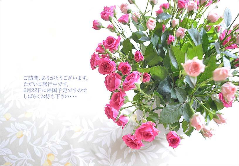 f0198771_0381490.jpg