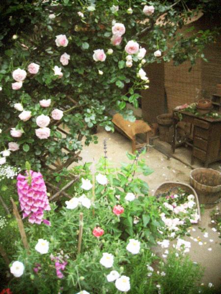 6月の庭仕事と花束のお裾分け。_d0077603_1015294.jpg