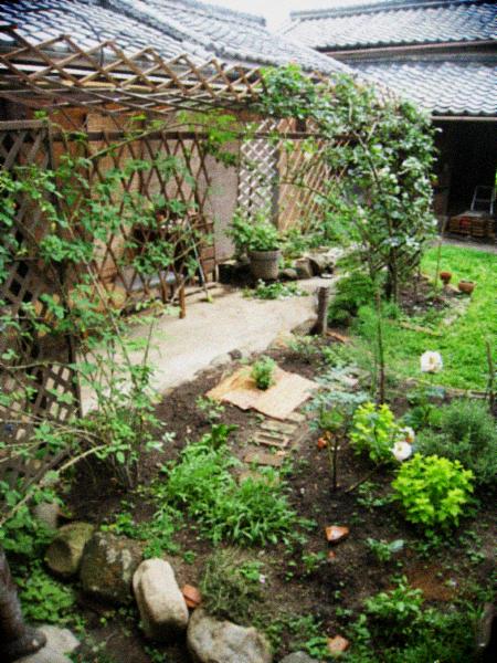 6月の庭仕事と花束のお裾分け。_d0077603_5555037.jpg