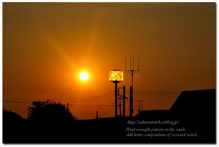 夕空に輝く・・・。_f0235723_1852744.jpg
