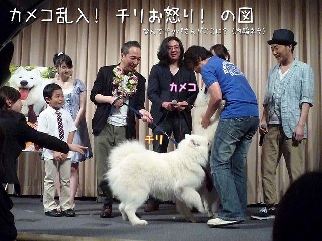 映画 『犬飼さんちの犬』 完成披露試写会_c0062832_645119.jpg