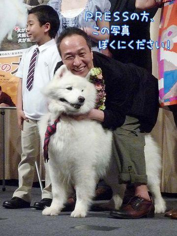 映画 『犬飼さんちの犬』 完成披露試写会_c0062832_645862.jpg