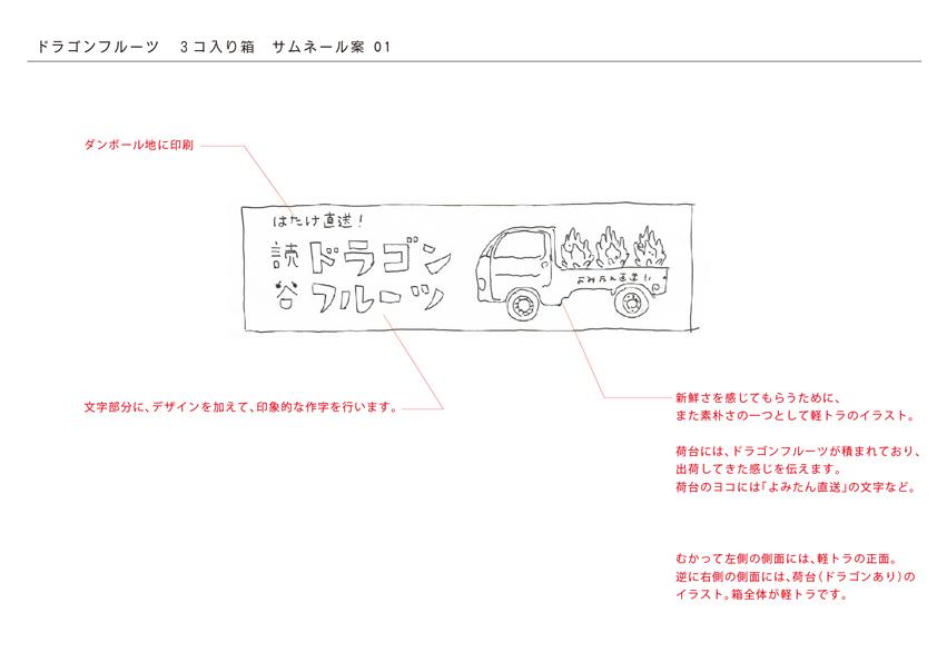 読谷産ドラゴンフルーツの箱_c0191542_13344090.jpg