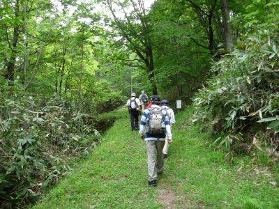 八ヶ岳周遊第6回・笠取峠から和田峠_f0019247_2125504.jpg