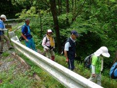 八ヶ岳周遊第6回・笠取峠から和田峠_f0019247_2161117.jpg