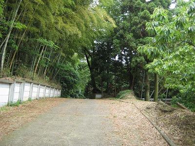 woodygardencafe@阿見町・あみアウトレット近く_a0091865_2219455.jpg