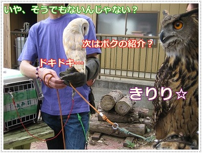 woodygardencafe@阿見町・あみアウトレット近く_a0091865_22264965.jpg