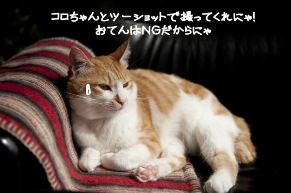 b0141397_11512436.jpg