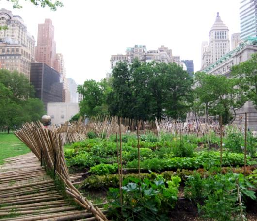 ニューヨークの公園にミニ農園登場!? Urban Farm at Battery Park_b0007805_19383175.jpg