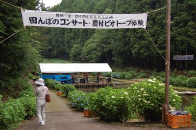 6/12あじさい祭り_a0154110_9565676.jpg