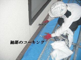 屋根工事7日目_f0031037_2136620.jpg