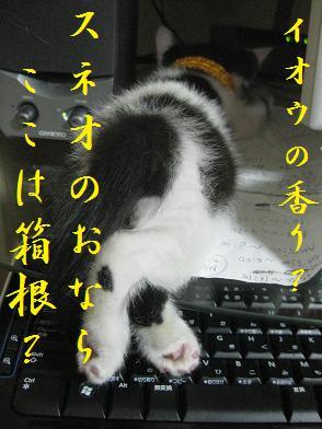 b0151748_12203788.jpg