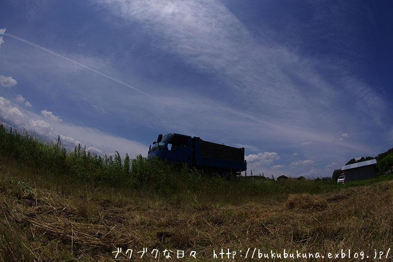 f0201353_23214971.jpg