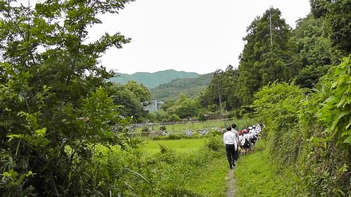 箱作小学校4年「田山川の生き物観察」サポート_c0108460_21185086.jpg