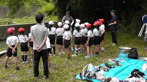 箱作小学校4年「田山川の生き物観察」サポート_c0108460_21194940.jpg