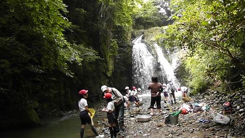 箱作小学校4年「田山川の生き物観察」サポート_c0108460_2228962.jpg