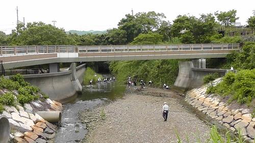 箱作小学校4年「田山川の生き物観察」サポート_c0108460_233714100.jpg