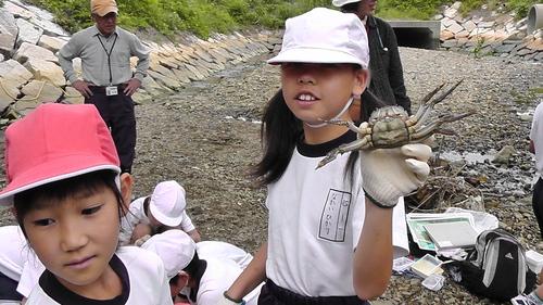 箱作小学校4年「田山川の生き物観察」サポート_c0108460_23392990.jpg