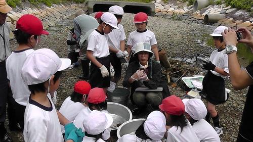 箱作小学校4年「田山川の生き物観察」サポート_c0108460_23444346.jpg