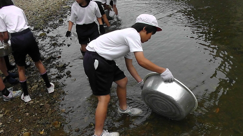 箱作小学校4年「田山川の生き物観察」サポート_c0108460_23454644.jpg