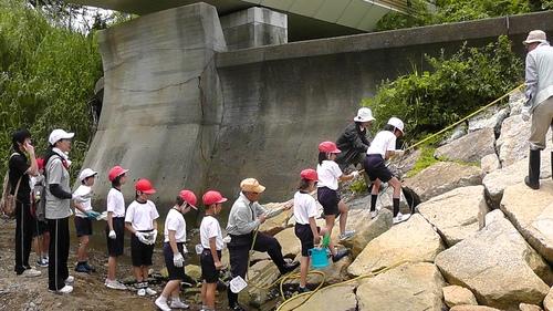 箱作小学校4年「田山川の生き物観察」サポート_c0108460_23462042.jpg