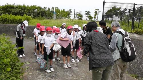 箱作小学校4年「田山川の生き物観察」サポート_c0108460_23465845.jpg