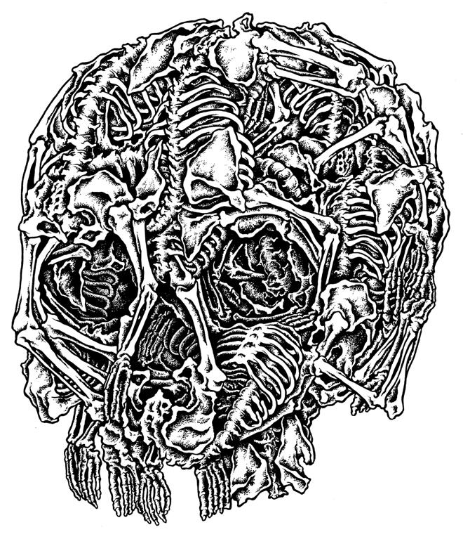 2011年6月8日 Bone and a Skull_a0202976_15154148.jpg
