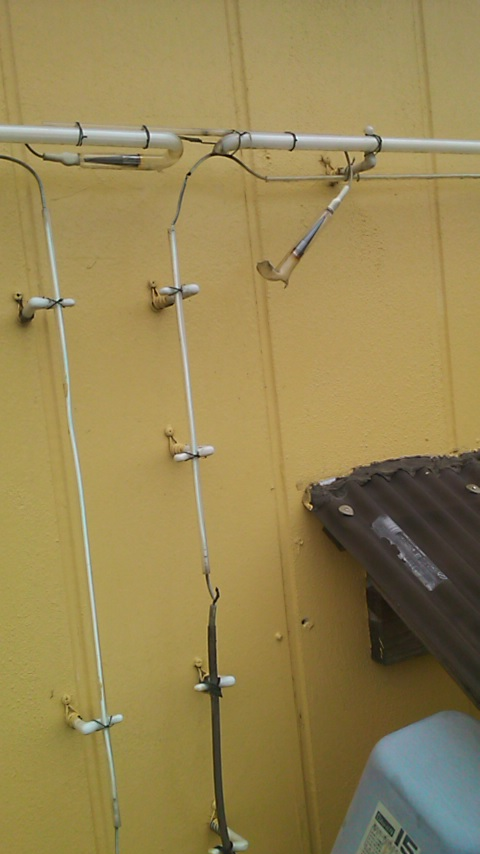 比叡山に蜂の巣?_b0152079_17503852.jpg