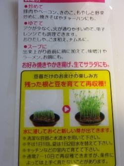 家庭菜園?~新たな育成!_d0091909_10523022.jpg
