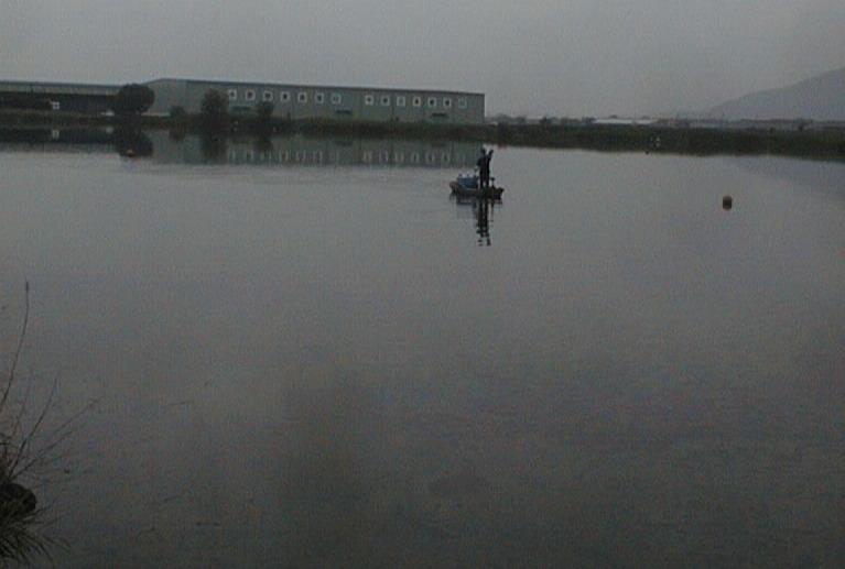 tbcスキルアップミーティング&バス釣り大会 結果発表_a0153216_21571067.jpg