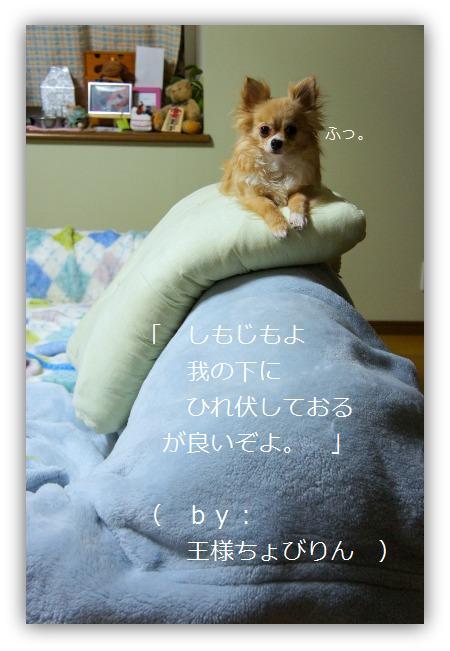 b0112758_22101734.jpg
