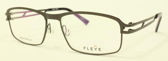 FLEYE 新型モデル_e0200978_1418401.jpg