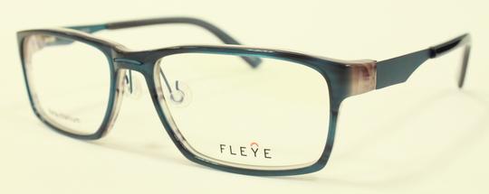 FLEYE 新型モデル_e0200978_1418964.jpg