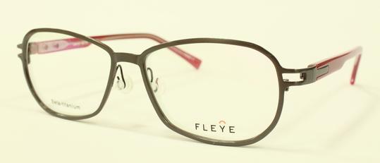 FLEYE 新型モデル_e0200978_14191681.jpg