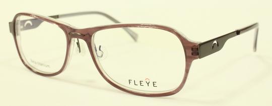 FLEYE 新型モデル_e0200978_1420456.jpg