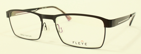 FLEYE 新型モデル_e0200978_1421368.jpg