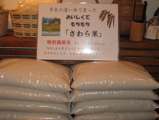 早良のきれいな水で育ったお米を紹介!_a0213879_145369.jpg