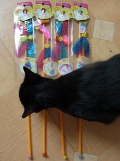 おもちゃ大好き猫 ろった編。_a0143140_22293474.jpg