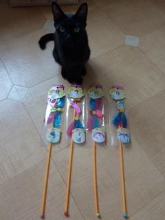 おもちゃ大好き猫 ろった編。_a0143140_2230445.jpg