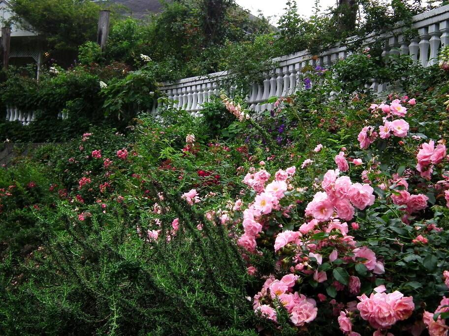 あの庭園に、あの小道の先に…またっ!?_e0064158_23372134.jpg