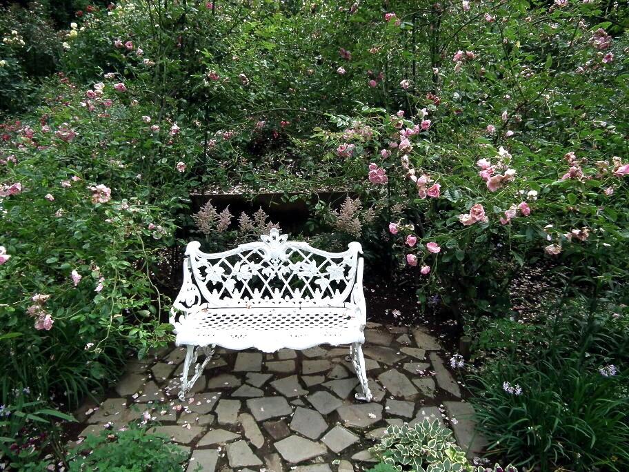 あの庭園に、あの小道の先に…またっ!?_e0064158_23375088.jpg