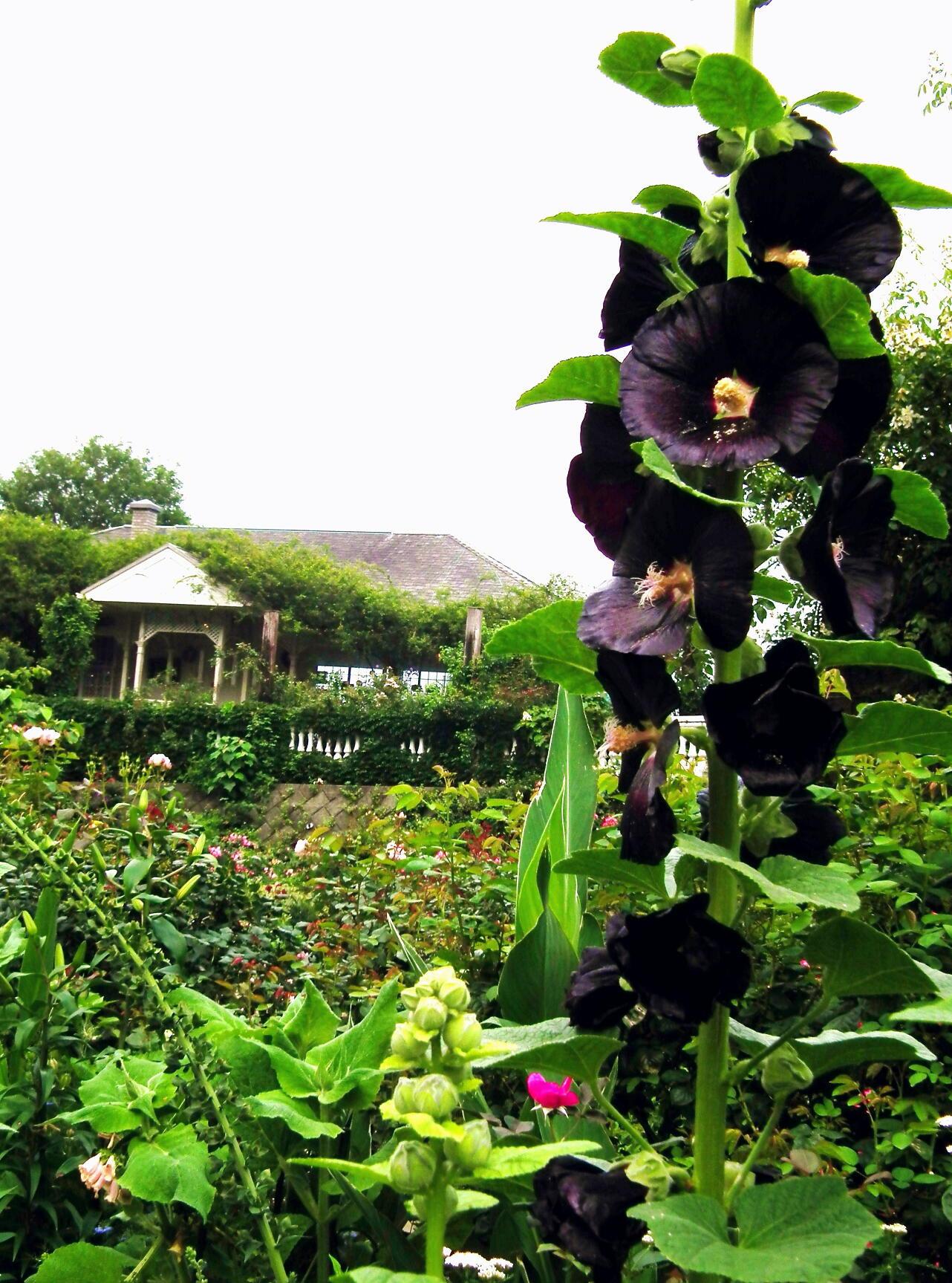 あの庭園に、あの小道の先に…またっ!?_e0064158_23381817.jpg