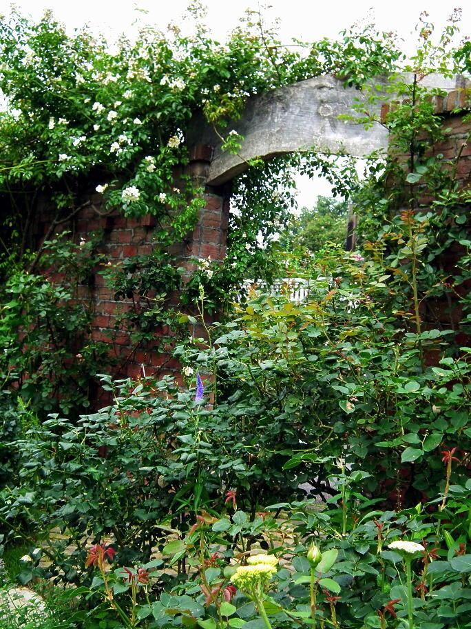 あの庭園に、あの小道の先に…またっ!?_e0064158_23383298.jpg