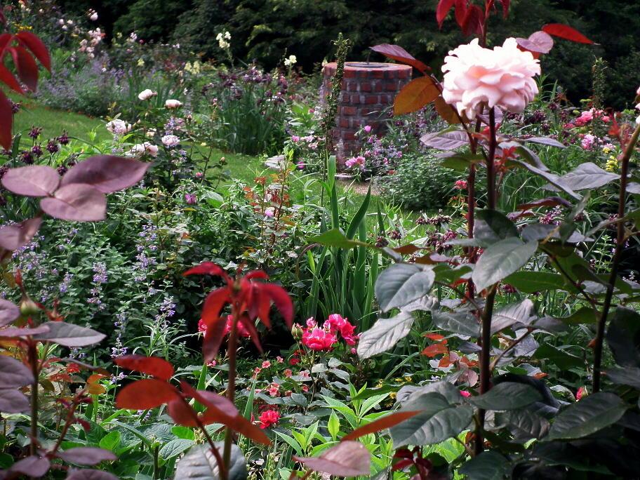 あの庭園に、あの小道の先に…またっ!?_e0064158_23385910.jpg