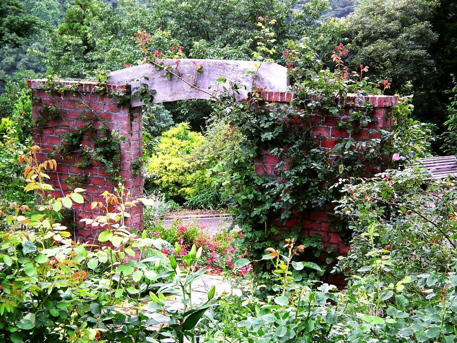 あの庭園に、あの小道の先に…またっ!?_e0064158_23391161.jpg