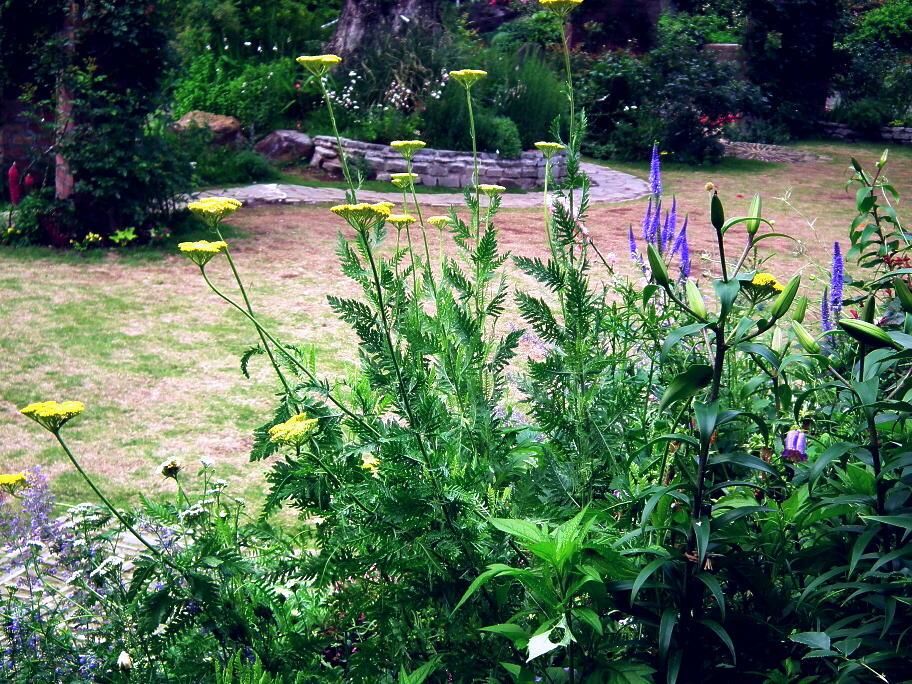 あの庭園に、あの小道の先に…またっ!?_e0064158_23392773.jpg