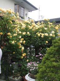 名古屋からのお客様_e0187897_15352320.jpg