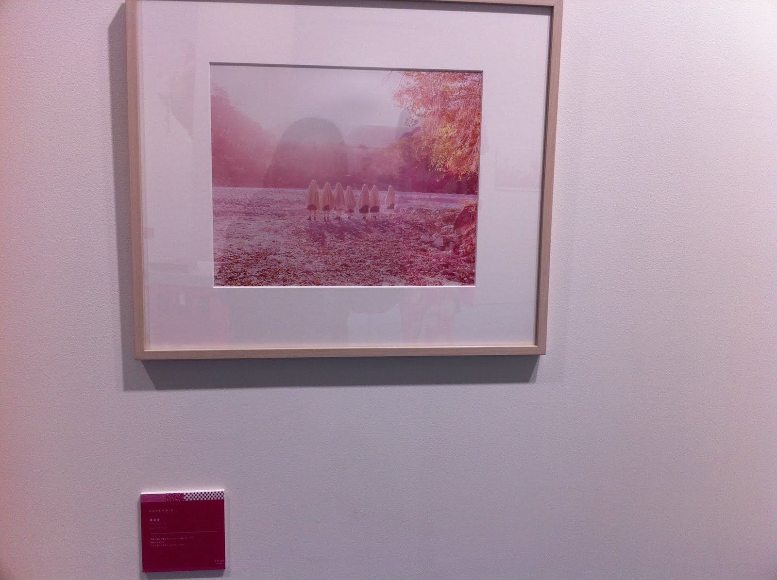 WHY DON\'T YOU PINK?展_d0151827_10531840.jpg
