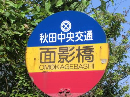 駅からハイキング 面影橋 : 秋田...